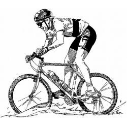 Что такое горный велосипед? Типы и виды МТБ велосипедов.